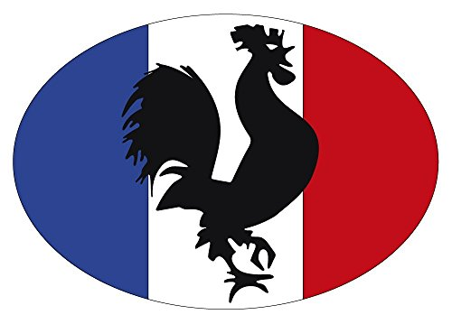Artimagen Pegatina Bandera Oval Gallo Francia 80x60 mm. de Artimagen