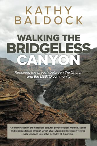 Walking the Bridgeless Canyon: Repairing the Breach between the Church and the LGBT community de Canyonwalker Connections