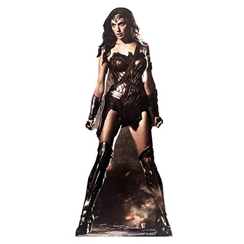 DC Comics Wonder Woman (GAL Gadot) Vida tamaño de cartón Recorte out de DC Comics