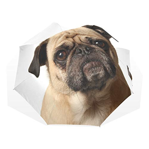 Compact Umbrellas For Kids Funny Pug Dog Windproof Travel Outdoor Umbrella Rain & Wind Resistant Compact and Lightweight For Business and Travels de JOCHUAN