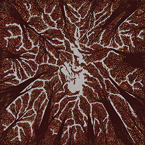 Crown Shyness de Rude Records-Hopeless Records