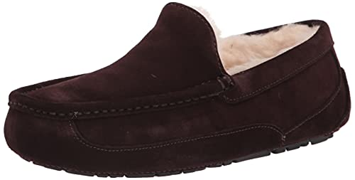 UGG Male Ascot Slipper, Espresso, 7 (UK) de UGG